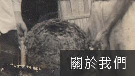 鄭翼-白蟻banner_15.png