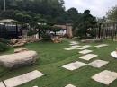 民宿景觀園藝