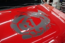 SHOW CARS (65)