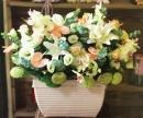 盆花 (9)