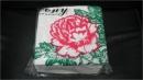 餐巾紙(13x13)