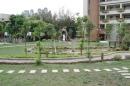 庭園造景 (3)