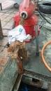 學校水溝內樹根清除