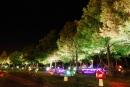 宜蘭親水公園-香菇造型燈殼3
