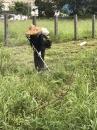 園藝修剪除草