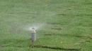 草皮鋪設與定時灑水施工