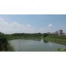 朴子工業區養殖地