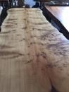 黃檜樹瘤大板