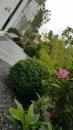 庭園造景,景觀設計,綠化工程規劃設計施工_19