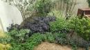 庭園造景,景觀設計,綠化工程規劃設計施工_22