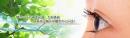 晉慶眼科診所網站