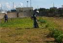 廠房內割草