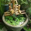 水車-流水生態池