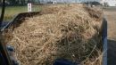南投廢木材回收 (3)