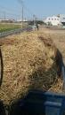 南投廢木材回收 (4)