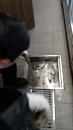 餐廳排水管阻塞,通水管中