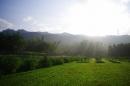 乾坤有機生態休閒農場-農場早晨