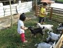 中原世紀休閒農場6