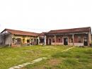 仰山休閒農場15