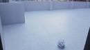 頂樓隔熱防水15