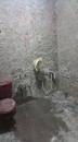 浴室翻修5