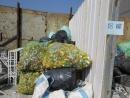 高雄鋁罐鐵罐回收
