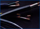 Wire Series.jpg
