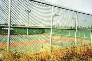 球 場 圍 籬.jpg