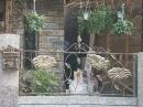 室外欄杆9