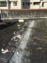 斷水施作--剃除隔熱磚 (2)