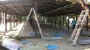 鐵皮屋拆除工程 (5)