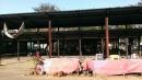 鐵皮屋拆除工程 (2)