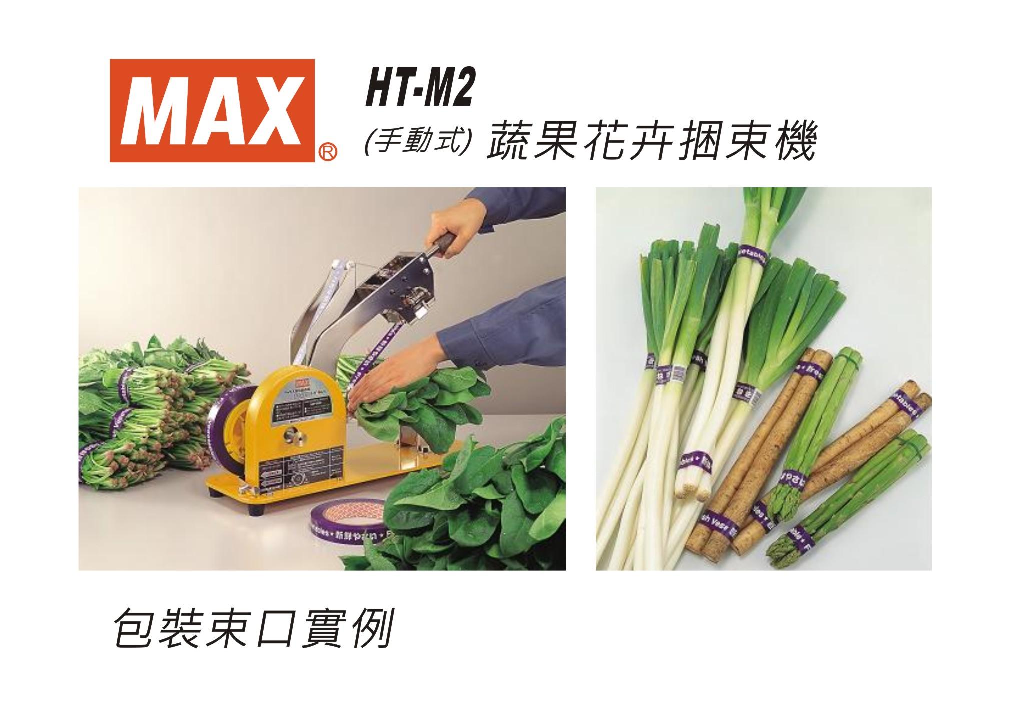 HT-M2-DM-1.JPG