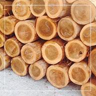 預鑄木模板-but01.jpg