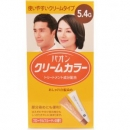 寶王護髮式染髮霜5.4G【4987234130702】