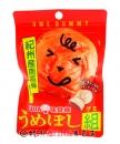 味覺梅子軟糖40g【4902750664050】