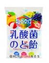 北日本綜合水果乳酸菌糖100g【4901360327119】