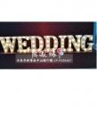 WEDDING  LED燈套組出租