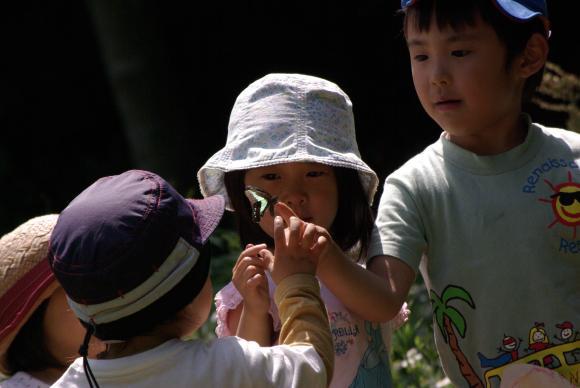 「森の育ち場 いっぽいっぽ農園」づくりプロジェクト