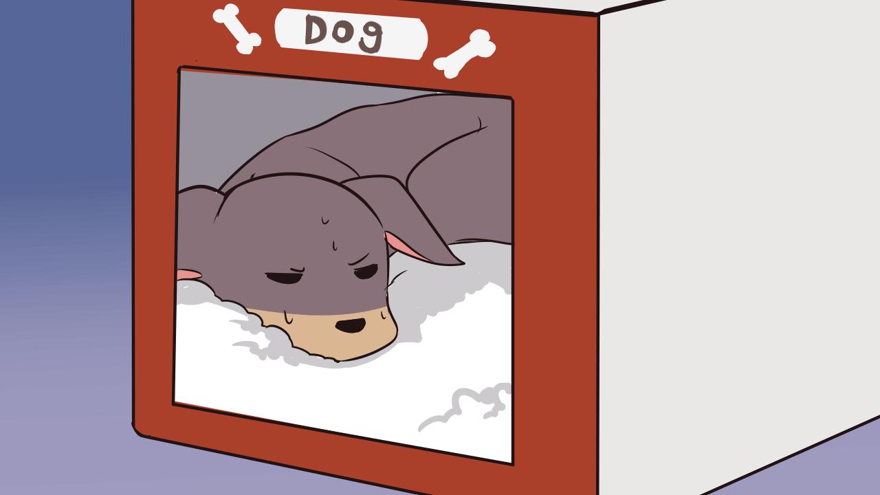 帰宅するといつも玄関に迎えに来る犬が来ないでハウスに入っている→「何か悪さをしてる」