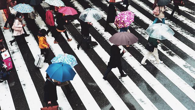 【雨の日あるある】用心して傘を持っていった日ほど雨が降らない