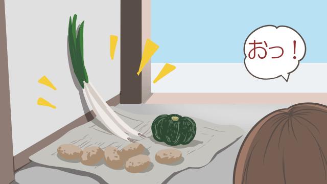 玄関に野菜が置いてある