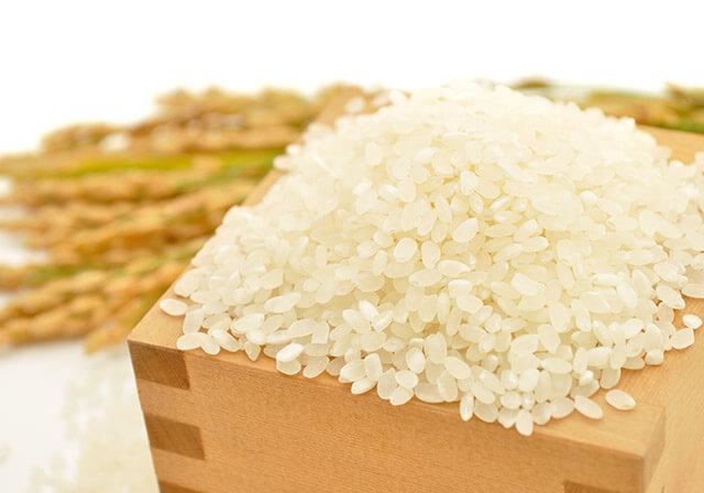 玄米ダイエットの効果と落とし穴~玄米には向き不向きがある?