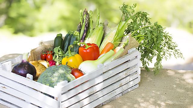 ダイエット効果を下げる夏の悪習慣とは?夏ダイエットのコツ!