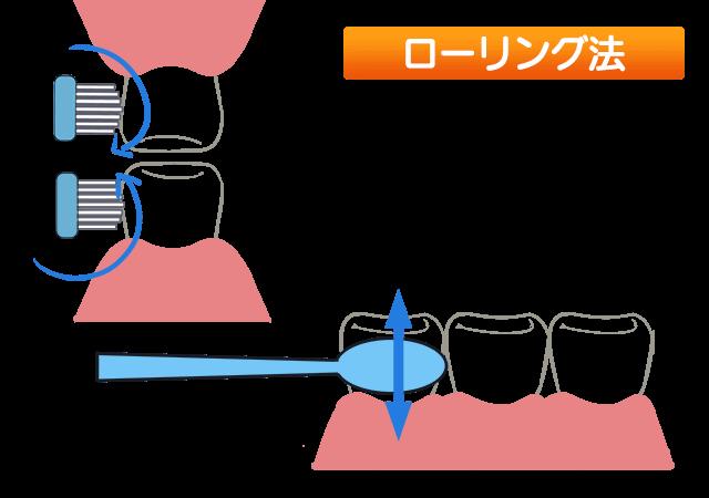 歯の磨き方 ③ローリング法