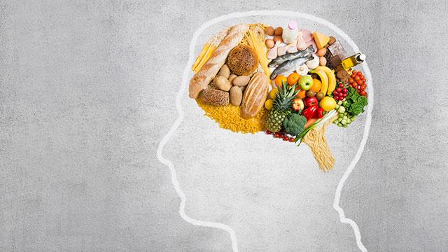 脳の仕組みを理解してダイエットを成功させよう