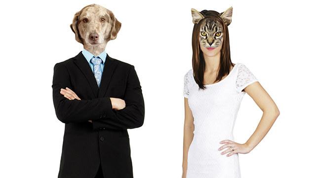 犬系男子の特徴や仲良くなる方法は?人気の彼とずっとラブラブなカップルになるコツ4つ
