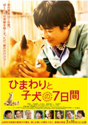 ⑧ひまわりと子犬の7日間(2013年)