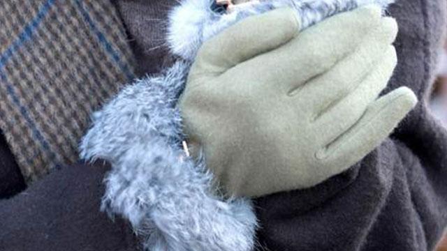 機能性もデザインも抜群♪着けたままスマホも使える大人可愛い手袋特集