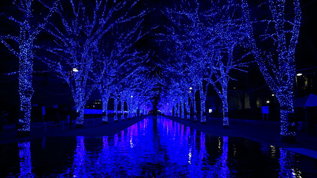 渋谷でイルミネーションを楽しむなら!『青の洞窟 SHIBUYA』は光と音の演出で幻想的♡